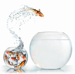 Entrepreneurship_risk taking